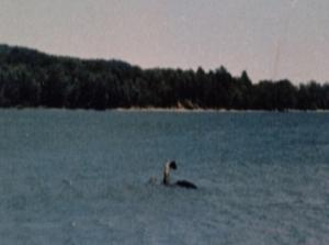 """Champ"" from Lake Champlain"